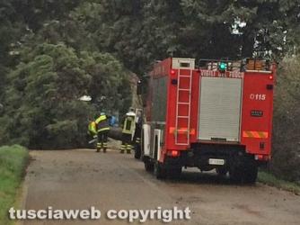 Maltempo - Montalto - Uno dei tanti interventi dei vigili del fuoco