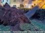 Albero crolla su una casa