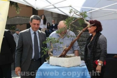 Il sindaco Marini al gazebo dei bonsai