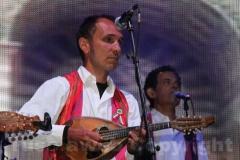 I mandolinisti