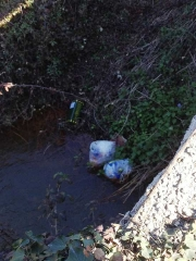 I rifiuti nell'area archeologica Acquarossa