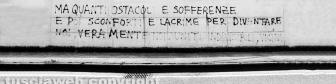 204 - Viale Raniero Capocci Viterbo - 12x3 - Daniele Camilli