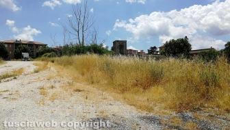 Bagnaia - Erbacce fuori dal cimitero
