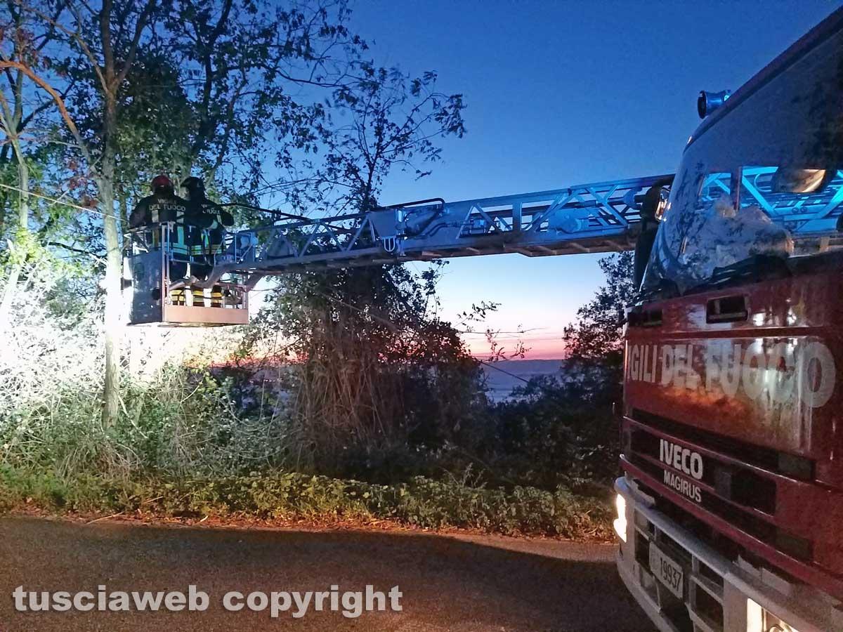 Montefiascone - Il cavo telefonico pericolante sulla Cassia - L'intervento dei vigili del fuoco