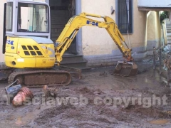 I canepinesi ripuliscono il paese