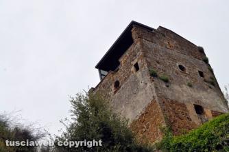 Viterbo - Castel D'Asso dimenticato