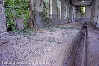 La condizione in cui versa la Chemical city