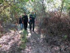 Coltivazione di canapa indiana sequestrata