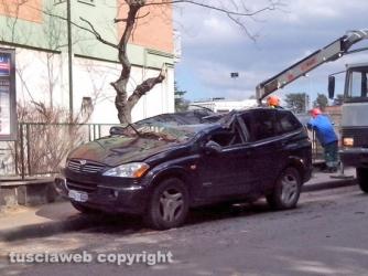 Viterbo - L\'auto finita sotto l\'albero in via Villanova