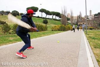 Cricket a Valle Faul