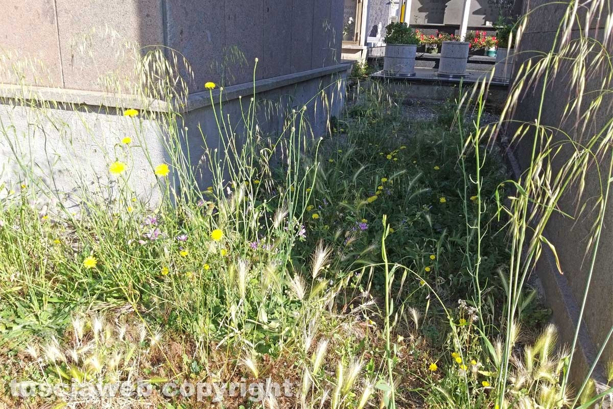 Montefiascone - Degrado al cimitero