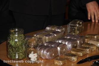 Bassano Romano - Sequestrata piantagione di droga e deposito di armi - Marijuana e hashish