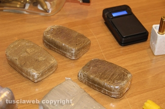 Bassano Romano - Sequestrata piantagione di droga e deposito di armi - I panetti di hashish