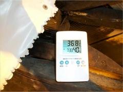 Il termostato trovato nella serra