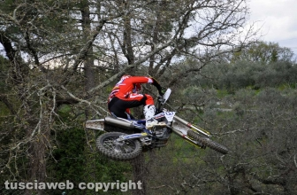 Sport - Motocross - Joakin Furbetta