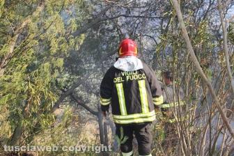Ennesimo incendio a Ponte di Cetti