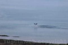 Fiamme sul lago di Vico
