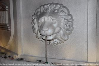 Santa Rosa - Fiore del Cielo brilla e dai leoni sgorga l'acqua