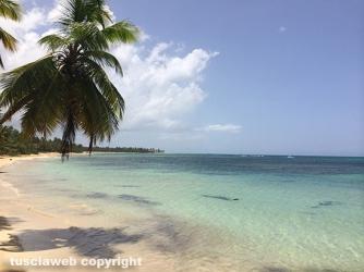 Repubblica Dominicana - Las Terrenas e BayaHibe - Marco Ciarmatori