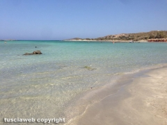 Spiaggia rosa di Elafonissi - Creta - Nicolò Alesini