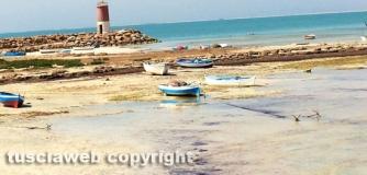 Isola di Djerba - Tunisia - Barbara Todini