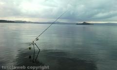 Battuta di pesca al lago di Bolsena - Costantino Danna