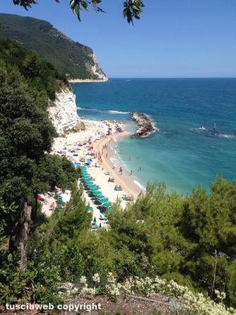 Riviera del Conero - Leone Cozzolino