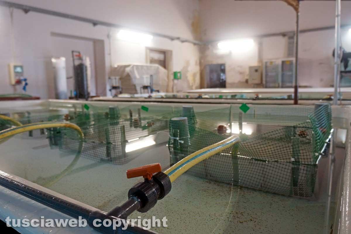 I laboratori delle Saline