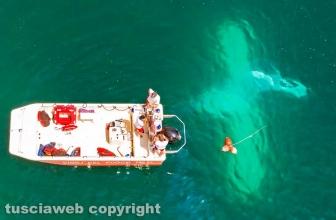 Lago di Bolsena - Idrovolante si inabissa - L'intervento dei vigili del fuoco - Foto di Massimiliano Bellacima