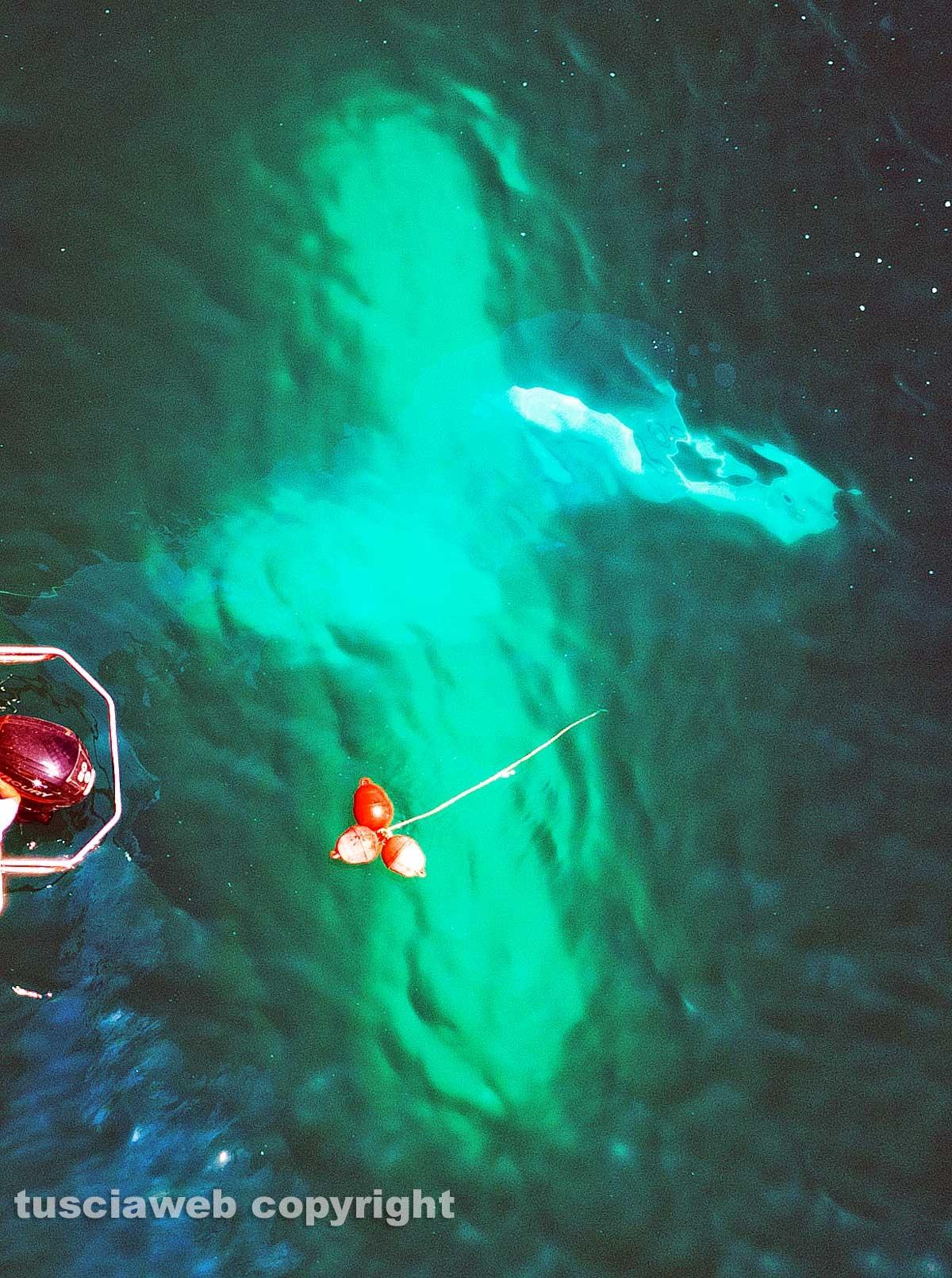 Lago di Bolsena - Idrovolante si inabissa - L'intervento dei vigili del fuoco