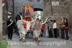 Processione del santissimo Salvatore