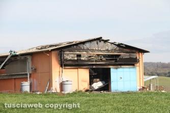 Vetralla - In fiamme capannone, morte 10mila galline