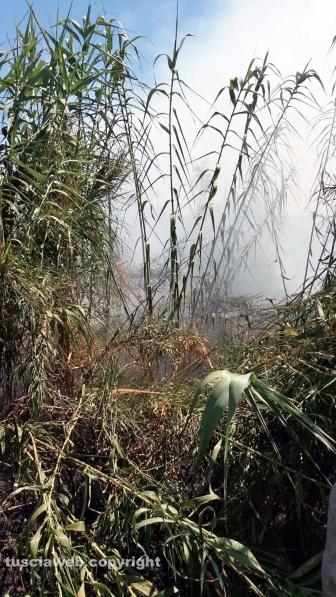 Grosseto-Montalto - Incendio sulla linea ferroviaria Tirrenica
