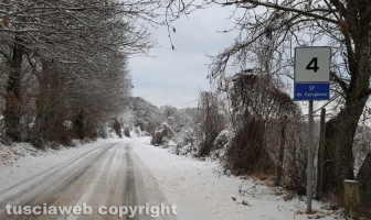 Maltempo - La neve sui Cimini - La strada provinciale Canepinese imbiancata