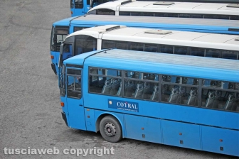 Viterbo - Alcuni bus Cotral