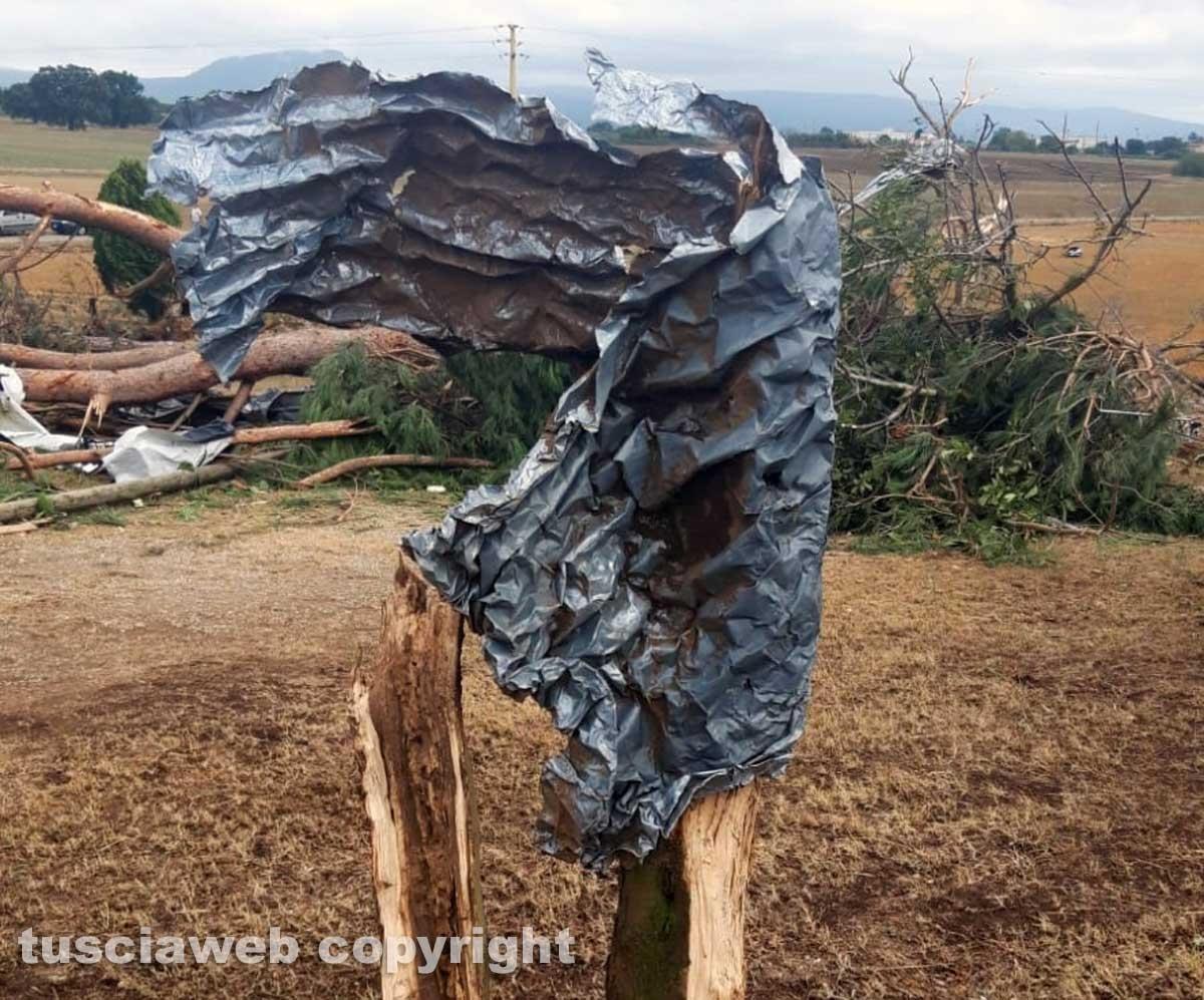 Maltempo - Tromba d'aria - I danni in zona Rinaldone