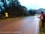Maltempo e alberi caduti a Montefiascone