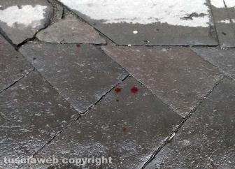Viterbo - Il sangue in via del Pavone