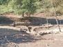 Piana del Lago, sospesi gli scavi al santuario etrusco