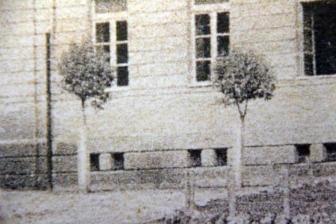 Viterbo - Piazza Dante nel 1929