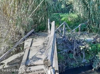 Ponte Camillario