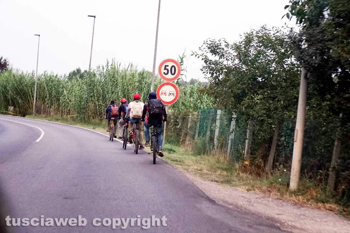 Viterbo - Lavoratori in bicicletta a Castel d'Asso