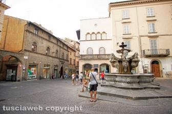 Viterbo - Piazza delle erbe