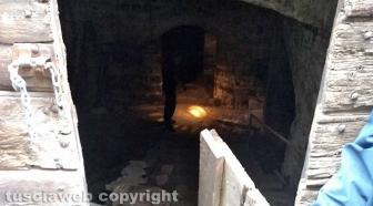 Viterbo - Via della Casaccia - Sfondano la porta e si introducono dentro una cantina - Interviene la polizia