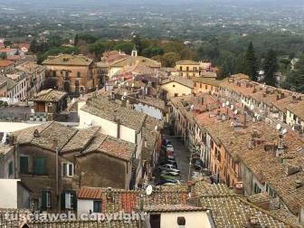 Tobia-San Martino al Cimino olio e vino