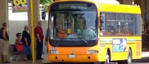 Un bus della Francigena