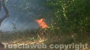 L'incendio e il fumo in località Mazzatosta