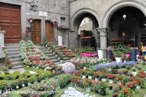 San Pellegrino in fiorei