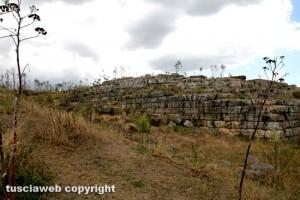 Sito etrusco Ara della regina
