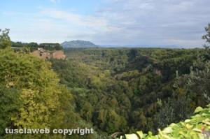 Castel Sant'Elia - Valle Suppentonia